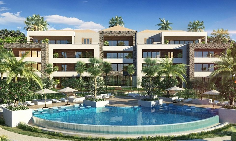 The Shore Blue Bay